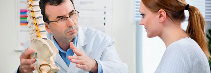 Chiropractie Vlaardingen XB Arts met wervelkolommodel